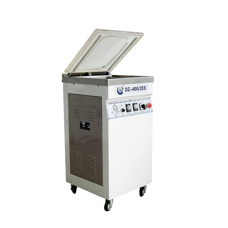 Bag Vacuum Packing Machine DZ-400/2ES